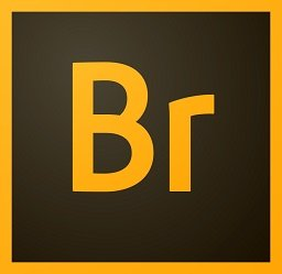 Adobe Bridge CC 2020 v10.0.3.138 Repack